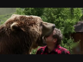 Человек и животные. Истории удивительной любви