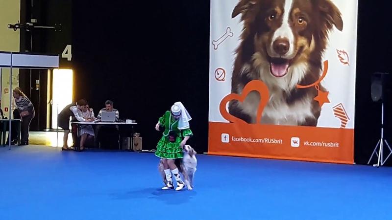 Ендальцева Айгуль и аусси Эхо. Татарский танец Кубэлэк