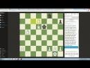 Лол кек шахматы