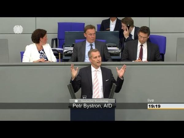 Lassen Sie uns unsere Grenze schützen ► AfD - Petr Bystron im Bundestag