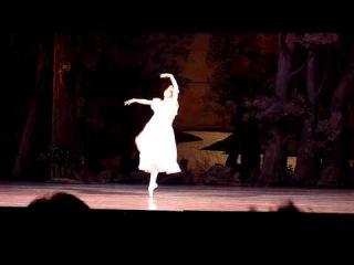 Елена Евсеева и Леонид Сарафанов в балете