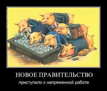 http://cs617126.vk.me/v617126057/2820/7K56ZVSs_6E.jpg