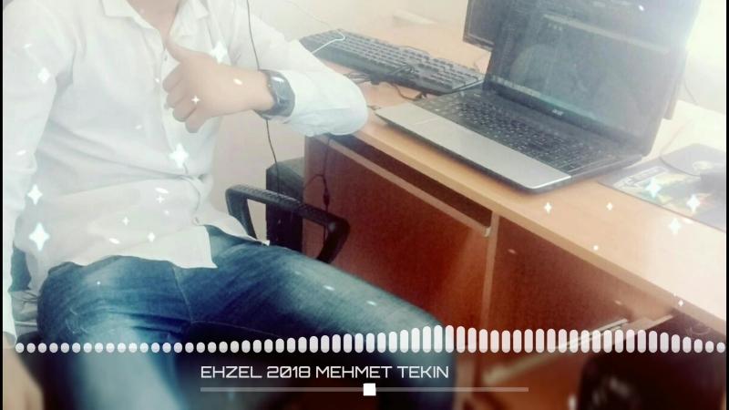 EHZEL_2018_MEHMET_TEKIN_exported_3.mp4