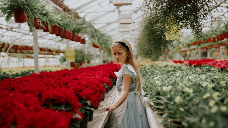 Погрузись в сказочный мир! Брестчан приглашают на фестиваль цветов за чудесами