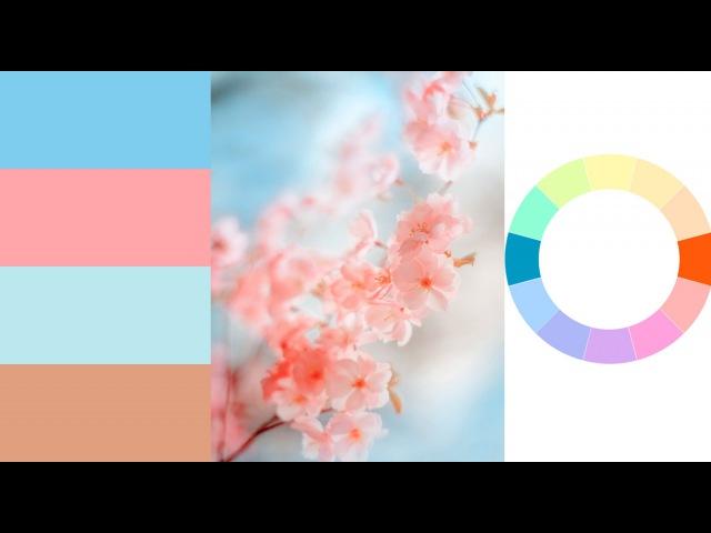 Лучшие сочетания цветов. Основы цветовой гармонии тонировки. JenyTalkRu
