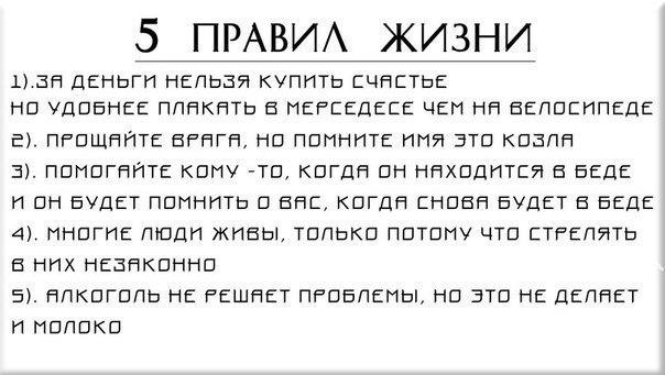 http://cs618131.vk.me/v618131234/18988/8g3kXXG4yu8.jpg