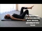 5 простых упражнений для мышц тазового дна