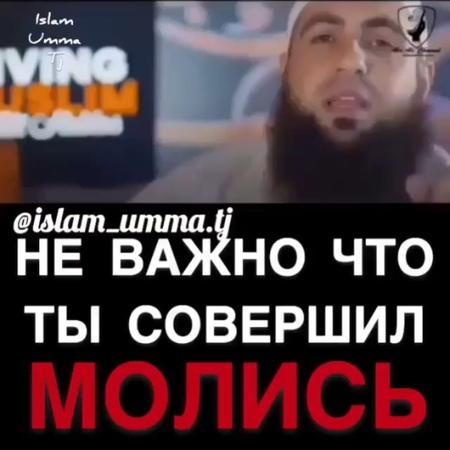 Salamat_talgatovich video