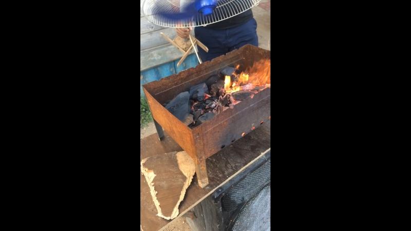 Новый способ приготовление шашлыков