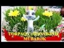 Novruz b