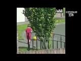 Видео для детей. ПРИКОЛЫ С ДЕТЬМИ Смешные дети Funny Kids Videos
