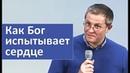 Как выглядит ПРОВЕРКА СЕРДЦА от Бога - Александр Шевченко