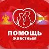 Добра питомцам. Крымск. Краснодарский край.