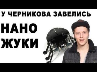 У ЧЕРНИКОВА ЗАВЕЛИСЬ НАНО-ЖУКИ