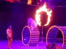 цирк  братьев  запашных  шоу  эмоции