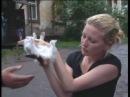 узбека лубит секса с кошка.