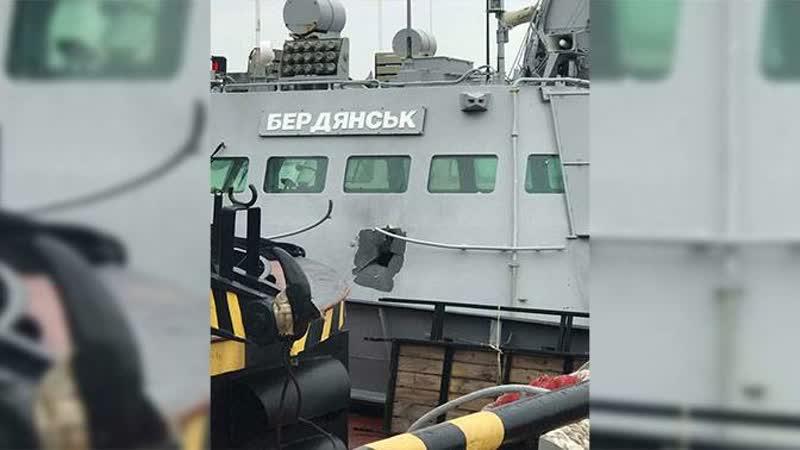 Записки Колорадского Таракана. Хроническая стадия активизма
