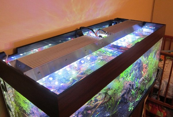 Светодиодные светильники для аквариума своими руками