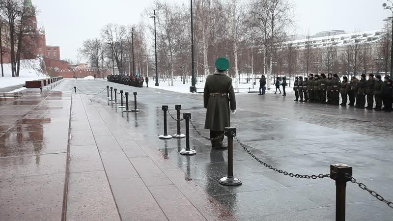 Александровский сад 2019 Февральское прохождение