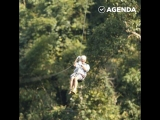Полёты над джунглями