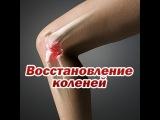 Упражнение для коленей, укрепление суставов