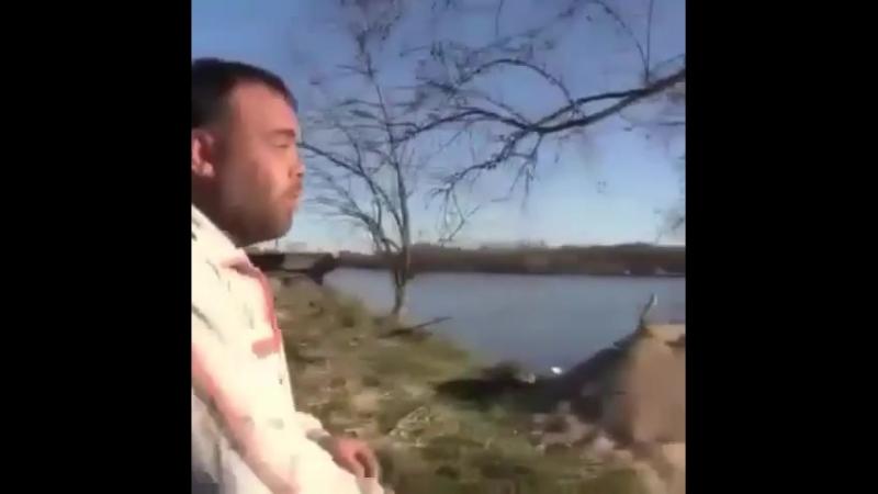 Leksi_kitti_video_1534396318401.mp4