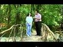 Manaf Ağayev - Mələkdi Bu (Klip)