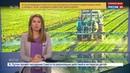 Новости на Россия 24 Евросоюз продлил лицензию на использование скандально известного гербицида