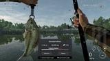 Fishing Planet Эверглэйдс, Дельта с привкусом соли - Фарм