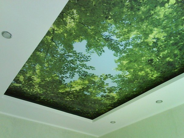 Атмосферный потолок