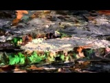 Balam Acab - See Birds (ESKEEMUNK VIDEO)