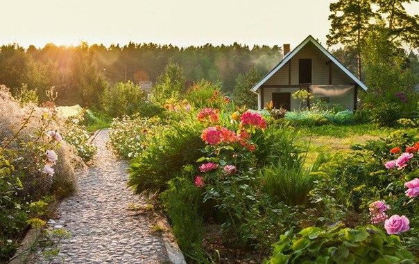 Секреты садоводу