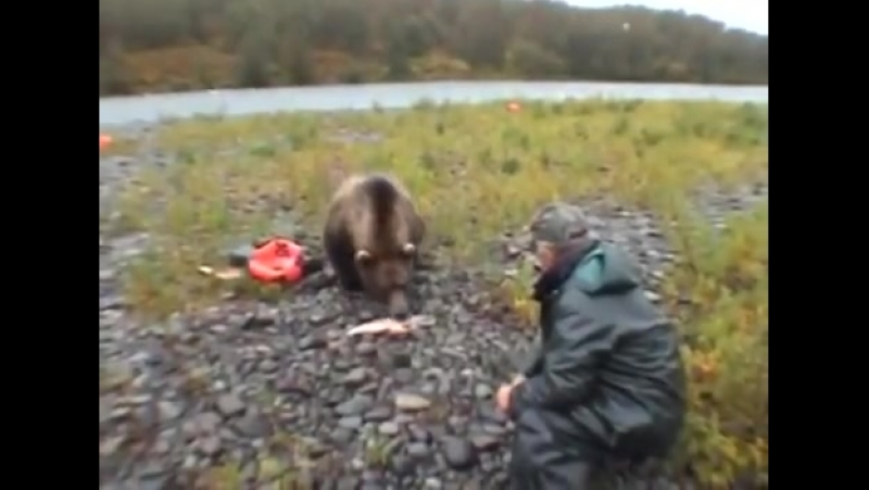 Люди и медведь