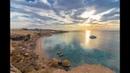 Египет. Бухта рас ум эль сид (Egypt Bay RAS um El sid)Фауна красного моря