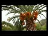 Орел и Решка. 4 сезон. 13 выпуск - Канарские острова