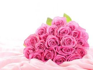Купить оптом розы в белгороде доставка цветов алматы астану