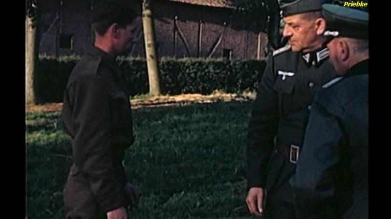 La segunda guerra mundial en color: 1- El nuevo orden mundial
