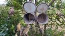 Удивительные быстрые ловушки для птиц на деревьях с использованием пластиковых ведер лучшие легкие