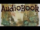 AudioBook H.C. Andersen The Ugly Duckling