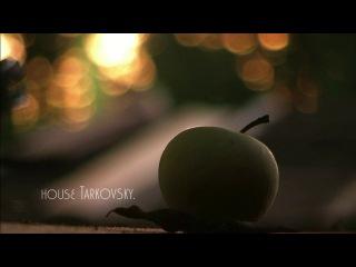 teaser,house Andrei Tarkovsky.