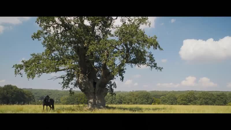 OSTWIND 4 _ Trailer [HD] russub