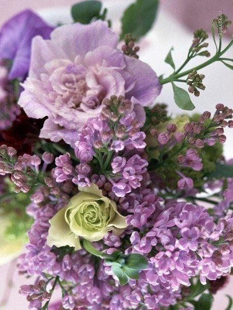 Букет прекрасных цветом!