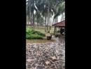 Вот и заканчивается наш прекрасный отпуск начинается сезон дождей