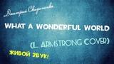 Дмитрий Скиданенко - What A Wonderful World (Louis Armstrong Cover) (ЖИВОЙ ЗВУК!)