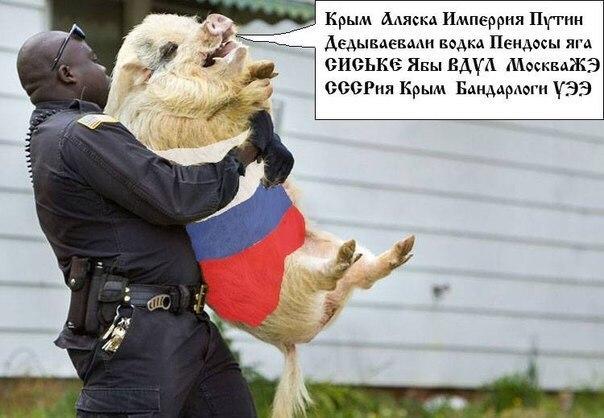 Крымская железная дорога прервала пригородное сообщение с материком - Цензор.НЕТ 6491