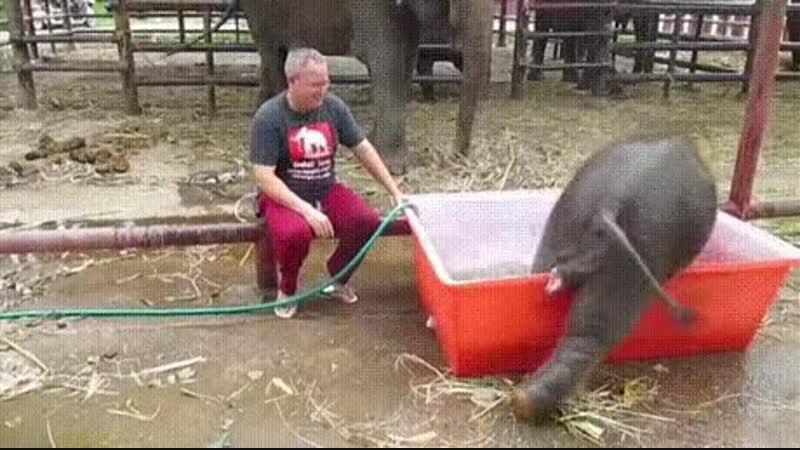 Когда пьяный пытаешься принять ванну