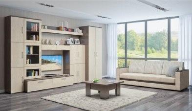 Много мебели стенка николь фото в интерьере