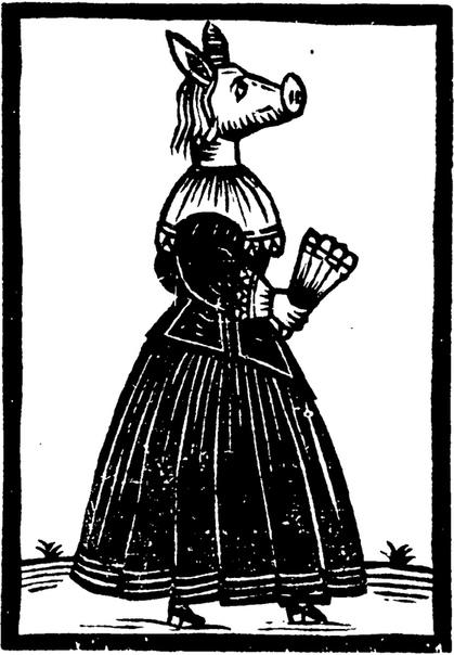 АНГЛИЧАНЕ ОКОЛО 300 ЛЕТ ВЕРИЛИ В СУЩЕСТВОВАНИЕ СВИНОРЫЛЫХ ЖЕНЩИН Этому поспособствовали легенды, возникшие ещё в конце 1630-х годов. Хотя истории эти отличаются в деталях, сюжет их в целом