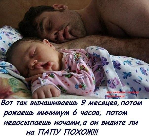 http://cs14102.vk.me/c7006/v7006380/3ed04/ywxdsO_E4Eg.jpg