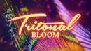 Tritonal - Bloom (Official Lyric Video)